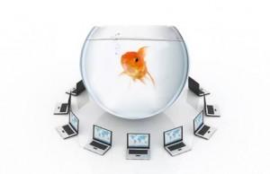 fishbowl-2-300x194